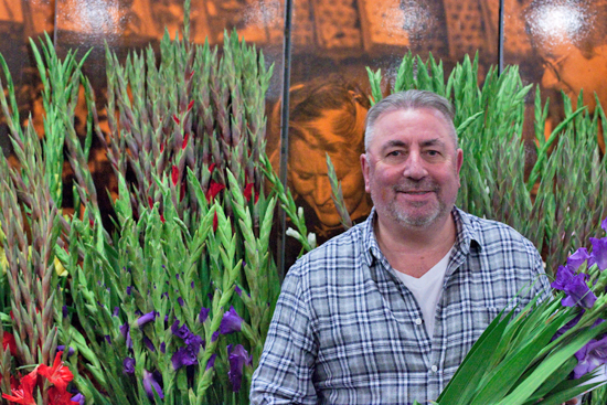 Dennis at Dennis Edwards Flowers with gladioli at New Covent Garden Flower Market