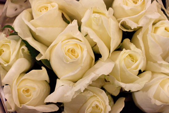White Norma Jeane roses at New Covent Garden Flower Market - September 2014