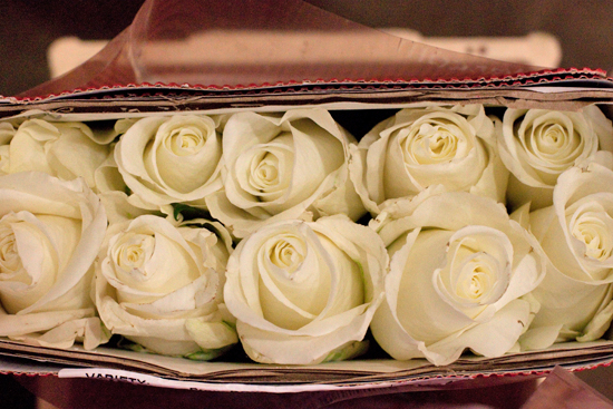 White Tibet rose at New Covent Garden Flower Market - September 2014