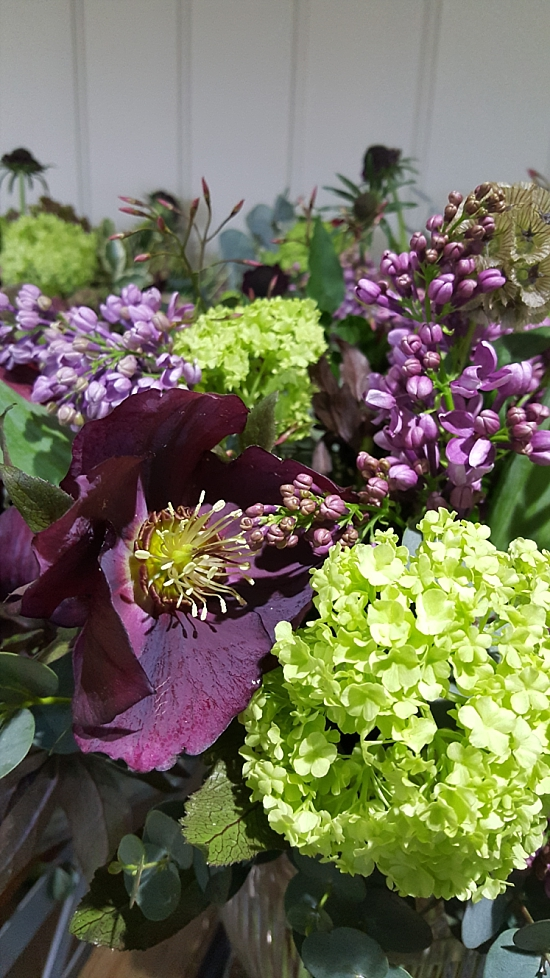 New-Covent-Garden-Flower-Market-product-profil-hellebores-Carrie-Macey_0.jpg