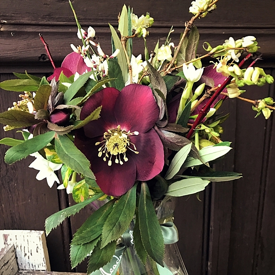 New-Covent-Garden-Flower-Market-product-profile-hellebores-Sophie-Meadowsweet.jpg