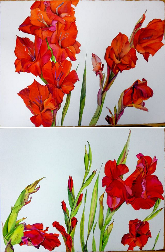 Gladioli paintings by Patricia Small