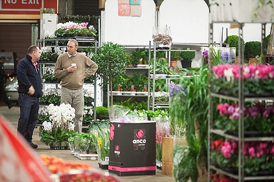 Quality Plants at New Covent Garden Flower Market