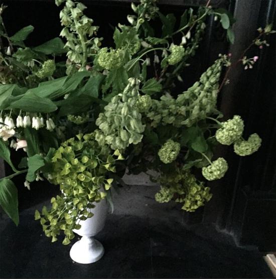 Scarlet & Violet fritillary design