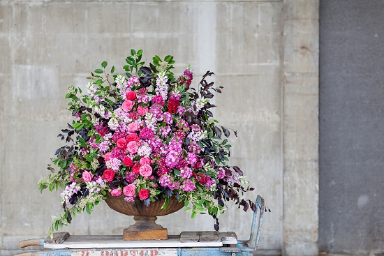 British Sweet williams in an urn designed by Hybrid for British Flowers Week 2014 at New Covent Garden Flower Market