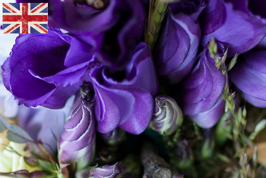 British purple Lisianthus at New Covent Garden Flower Market