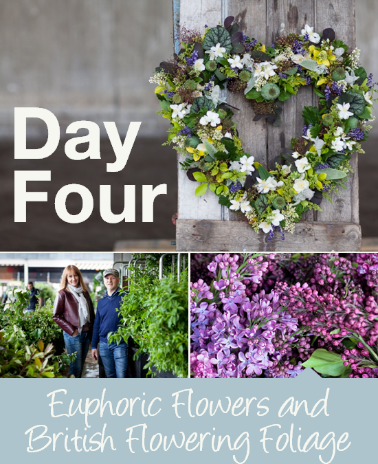 Day Four: Euphoric Flowers and British Flowering Foliage