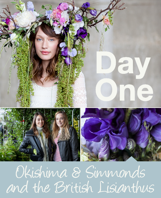 Day One: Okishima and Simmonds and the British Lisianthus
