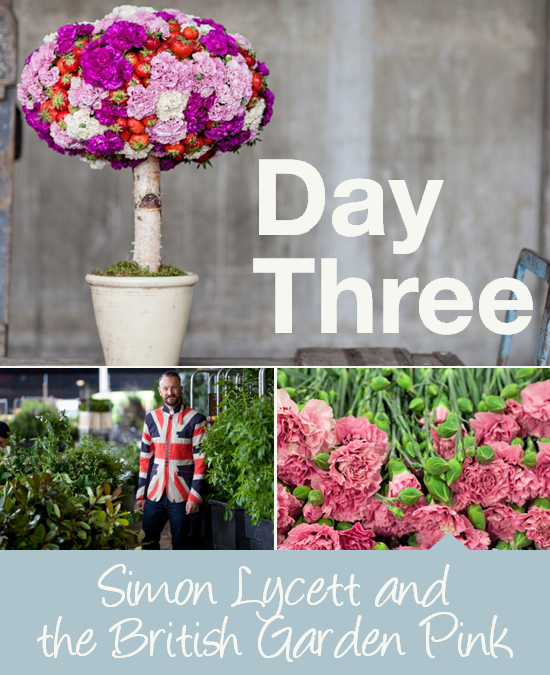 Day Three: Simon Lycett and the British Garden Pink