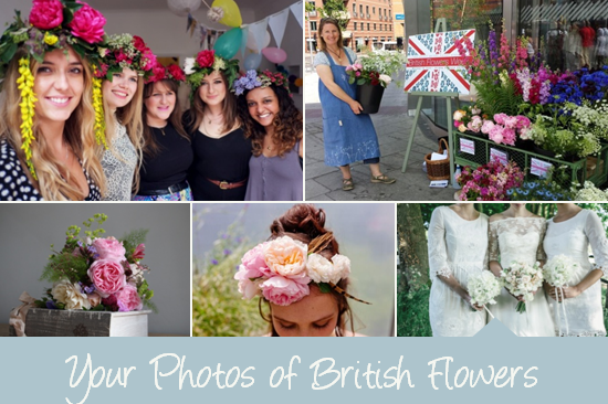Your Photos of British Flowers