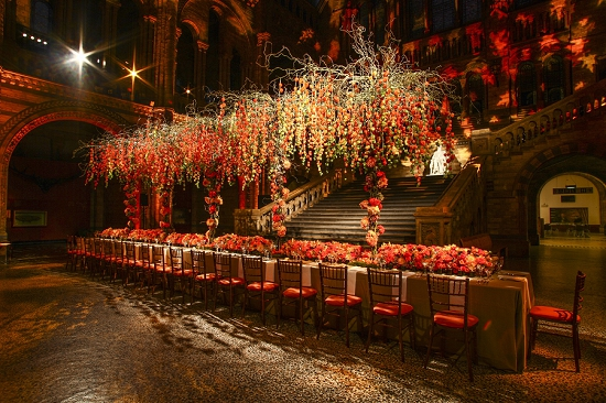 New Covent Garden Market Florist of the Year 2013 - Simon J Lycett - Banqueting table at the National History Museum