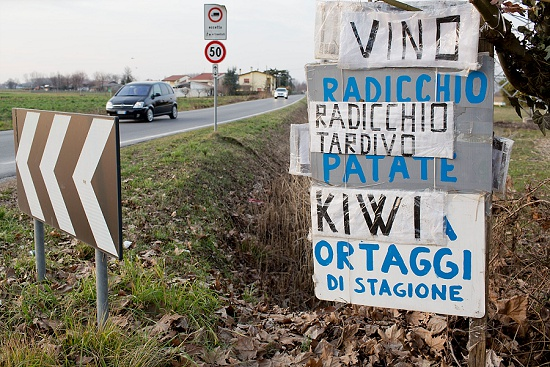 Road signs advertising radicchio