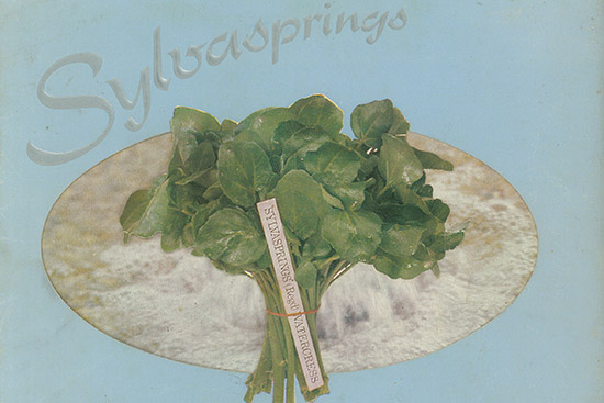 Vintage brand of watercress