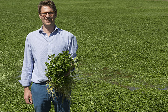 Tom Amery and watercress