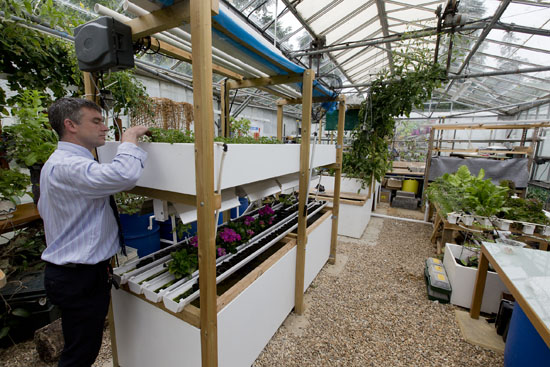 Aquaponic greenhouse at Plumpton College