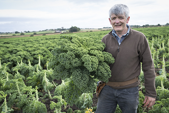 Chris Molyneaux holding green curly kale