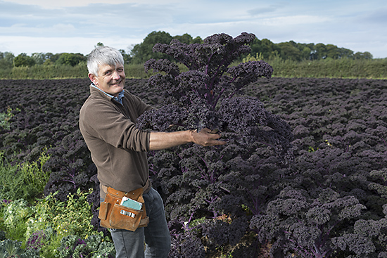 Chris Molyneaux holding puple kale