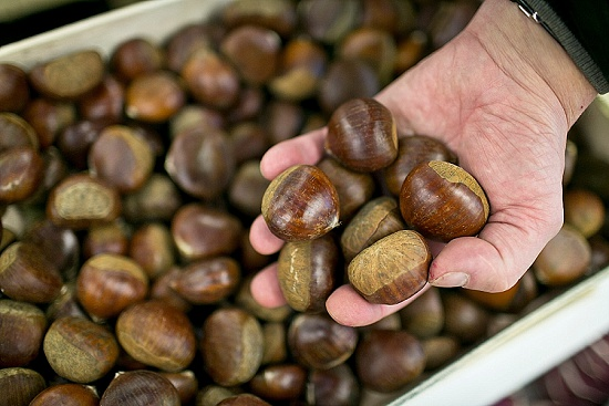 Chestnuts at New Covent Garden Market - November 2015