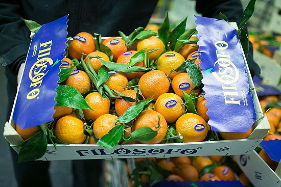 Clementines at New Covent Garden Market - November 2015