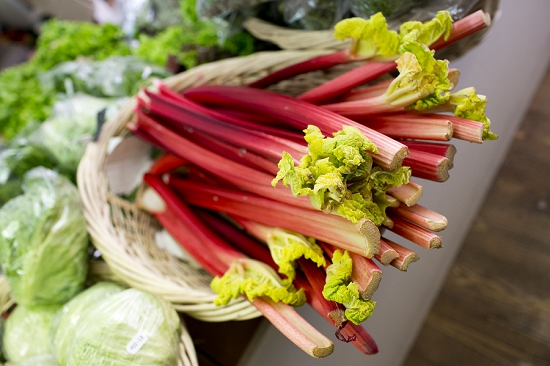 Rhubard at Swiss Cottage Grocers who buy from New Covent Garden Market