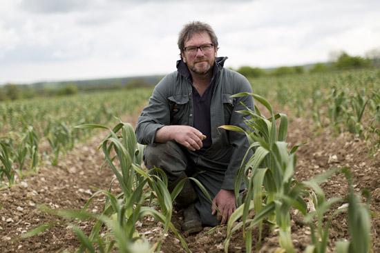 Grower Profile: South West Garlic Farm