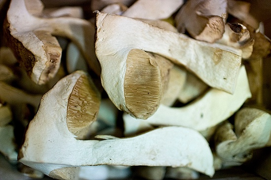 Cep mushrooms at New Covent Garden Fruit & Vegetable Market - January 2016