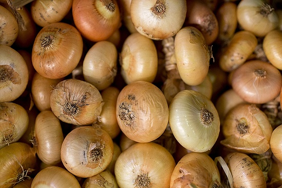 Italian sweet onions at New Covent Garden Fruit & Vegetable Market - January 2016