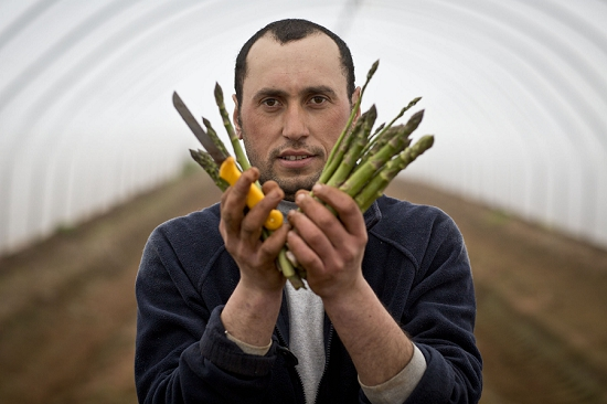 Ali holding freshly harvested British asparagus