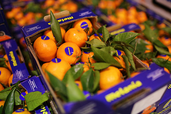fruit-and-vegetable-market-report-january-2014-clementines.jpg?mtime=20170922114106#asset:11361
