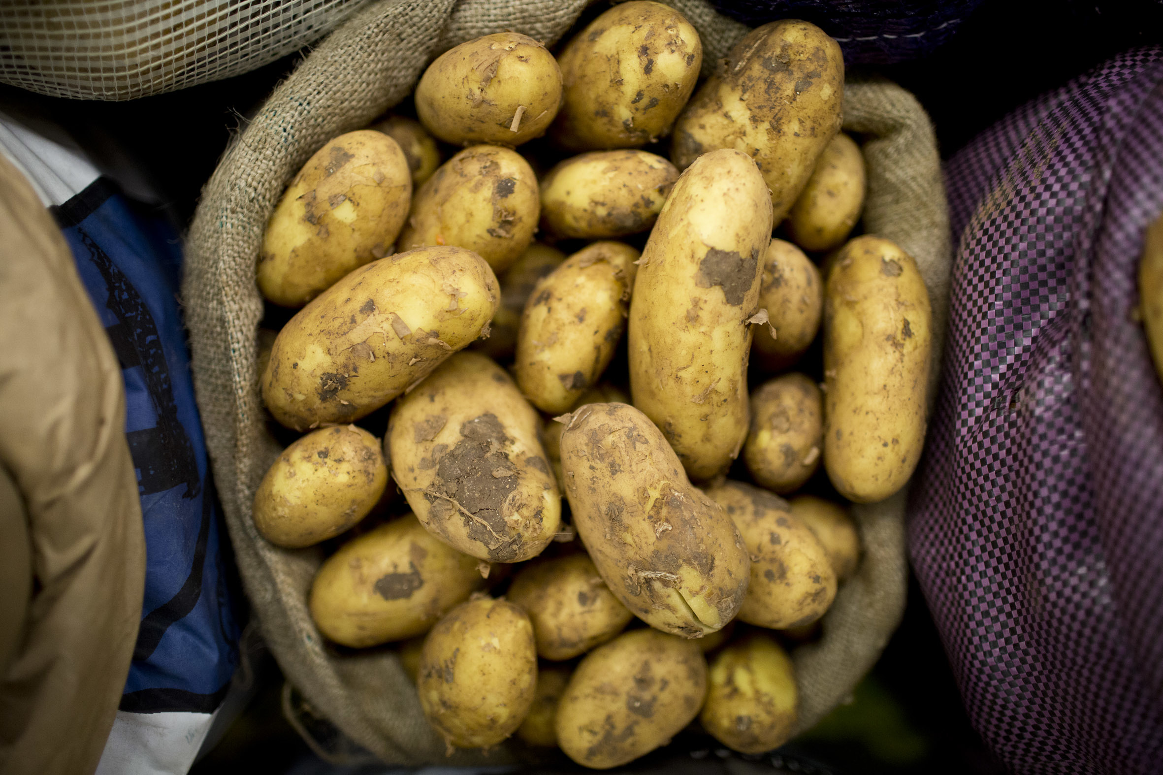 fruit-and-vegetable-market-report-march-2014-cyprus-potatoes.jpg?mtime=20170922112627#asset:11324