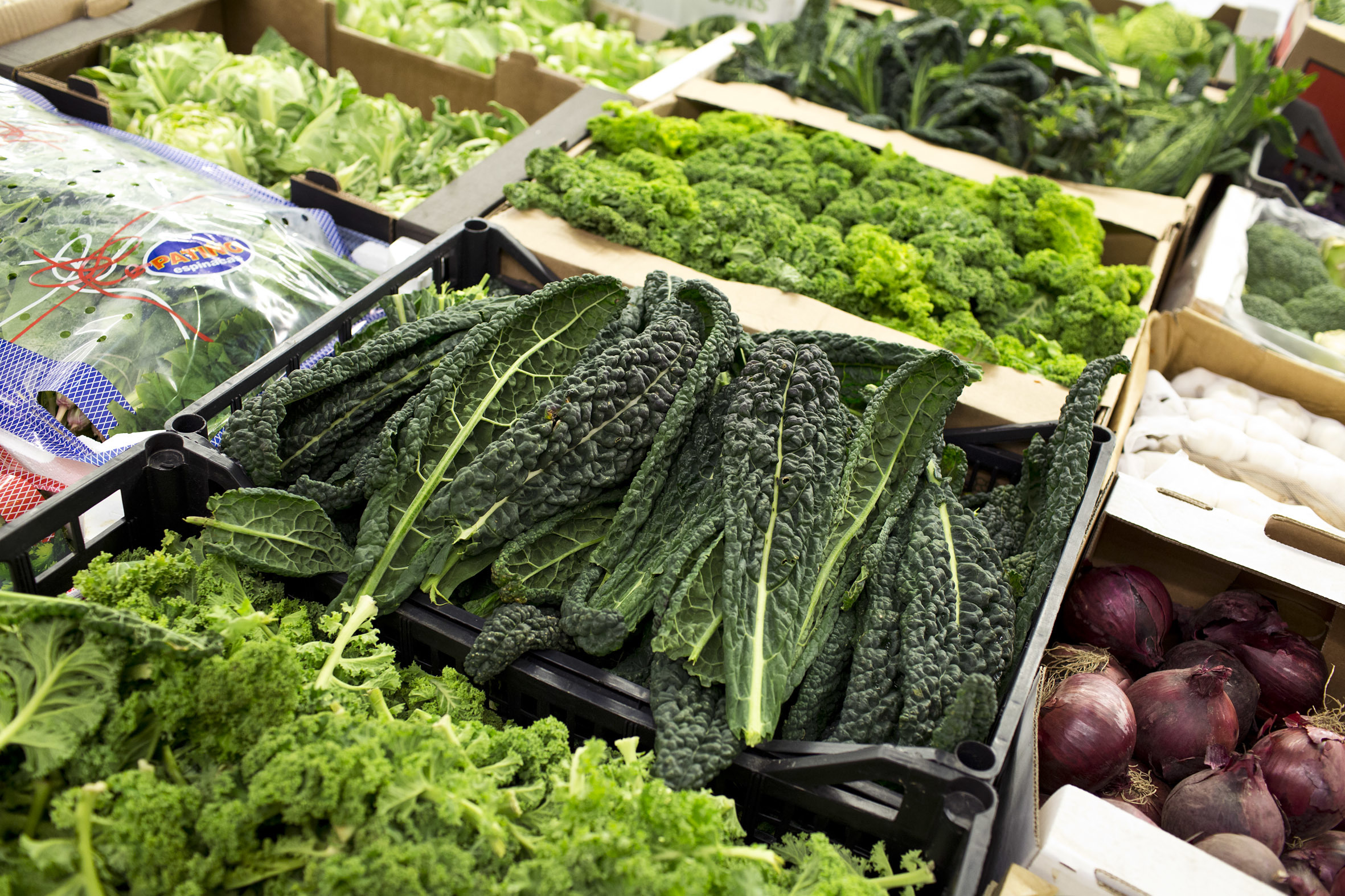 fruit-and-vegetable-market-report-march-2014-kale.jpg?mtime=20170922112634#asset:11327
