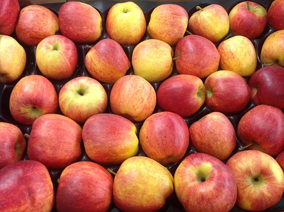 gala_apples.jpg?mtime=20170922114912#asset:11384