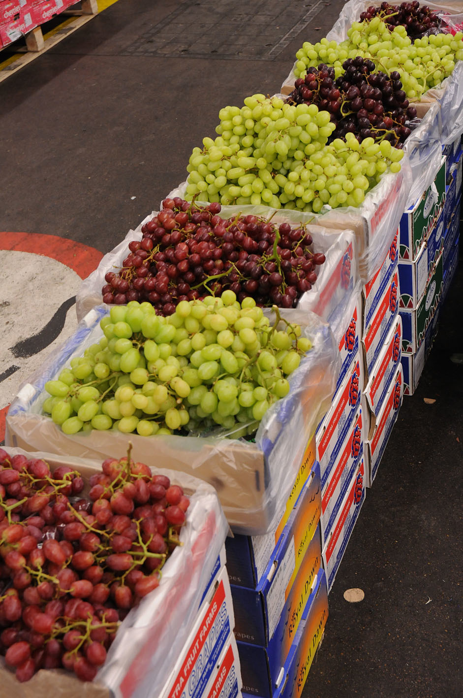 grape-selection.jpg?mtime=20170922144310#asset:11546