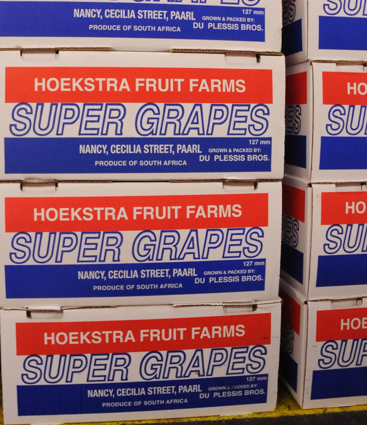 grapes_170922_144311.jpg?mtime=20170922144311#asset:11547