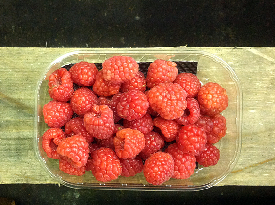 raspberries.jpg?mtime=20170922114916#asset:11388