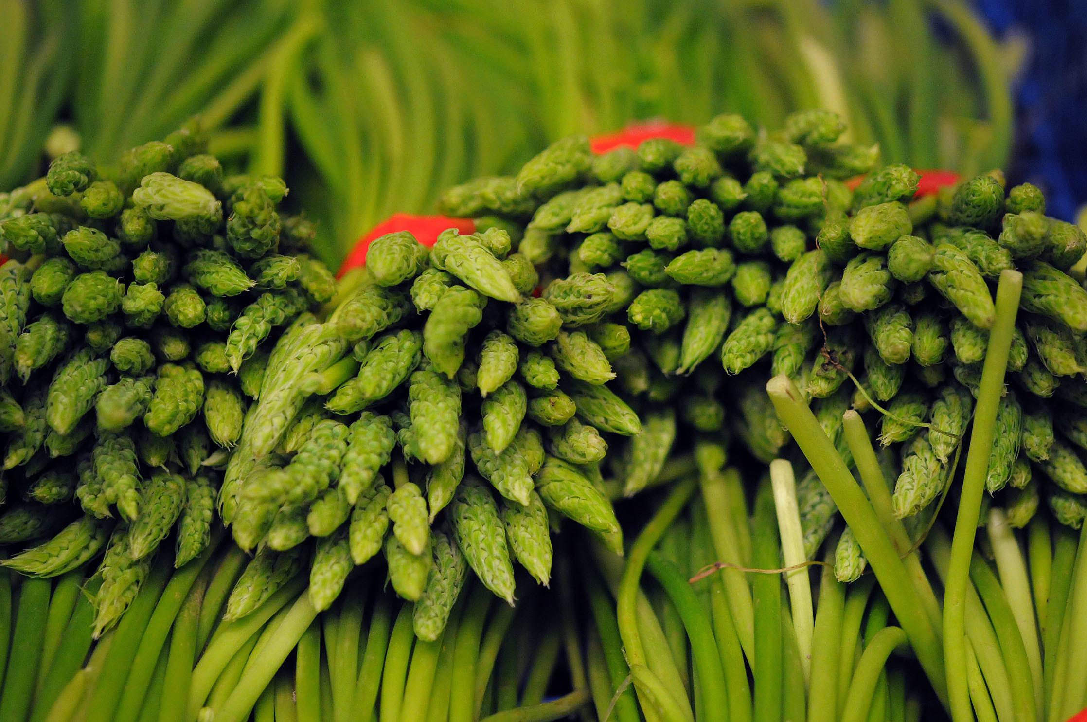 wild-asparagus.jpg?mtime=20170922140827#asset:11479