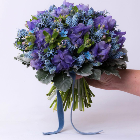 New-Covent-Garden-Flower-Market-Product-Profile-Report-March-2017-Muscari-Rona-Wheeldon-Flowerona-Paul-Thomas-Flowers.jpg?mtime=20170719142406#asset:5109