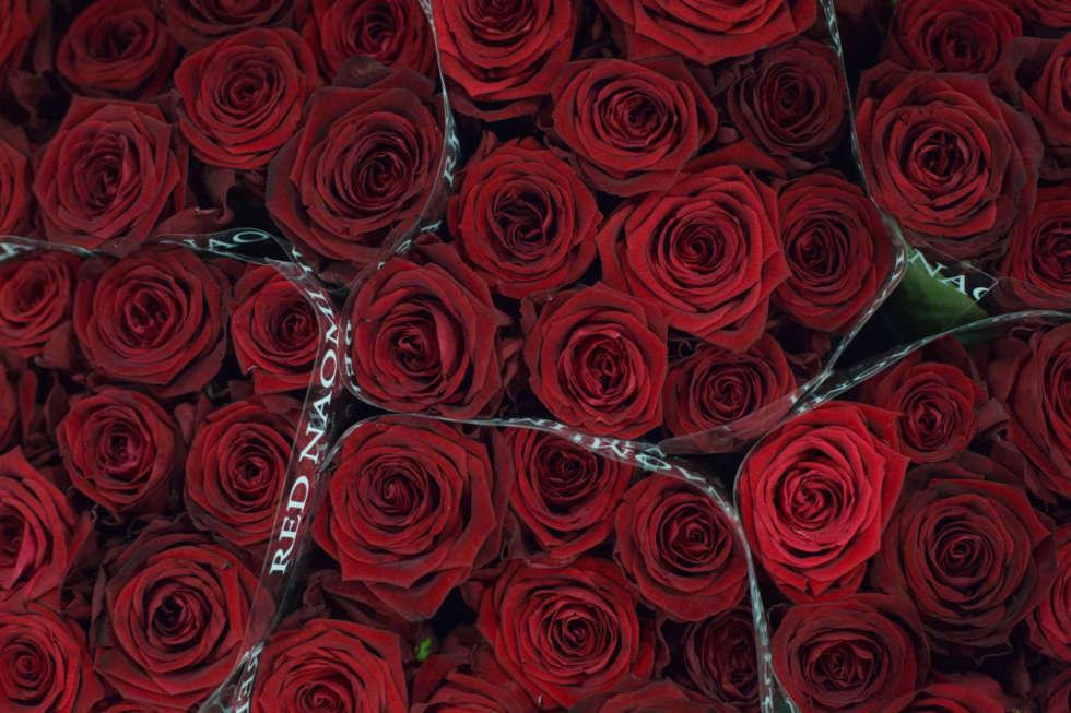 February's Flower Market Report