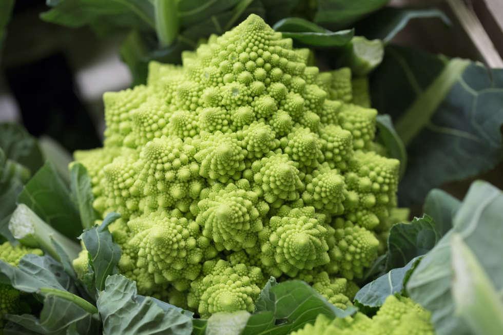 February's Fruit and Veg Market Report