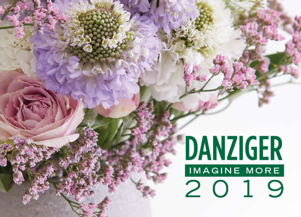 Danziger Product Showcase