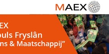 Maex_normal