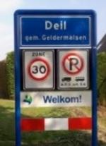 Deill_medium