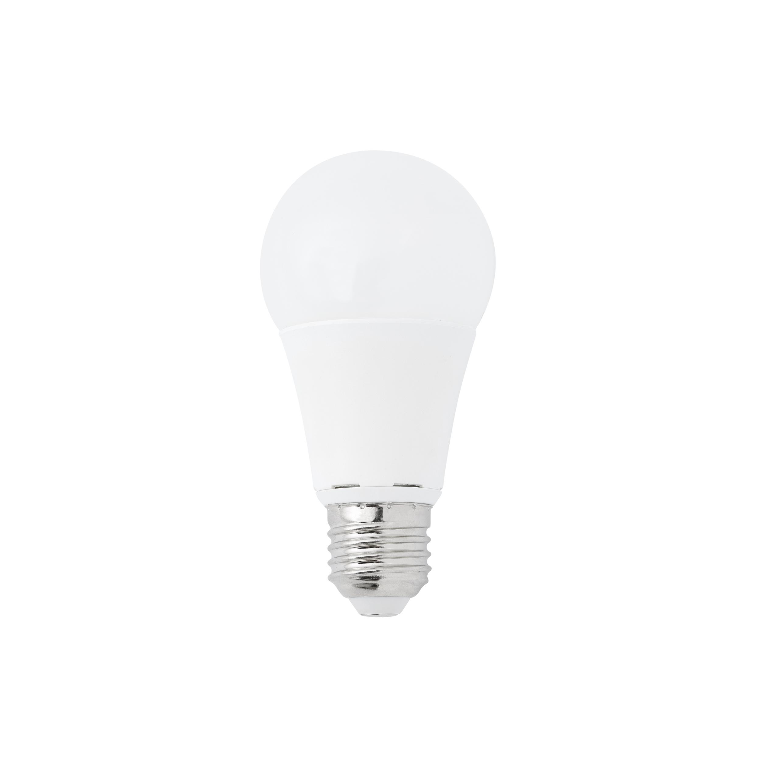 Bulb E27 Mat Led 10w Dimmable 2700k O6cm H12cm Nedgis Lighting