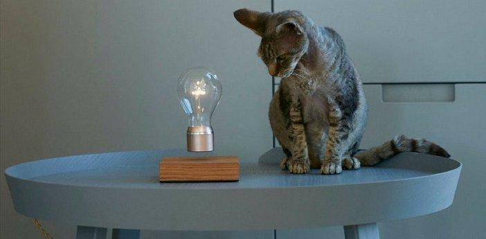 Ampoule en levitation flyte buckminster 2 0 cuivre led o12 6cm h20cm flyte normal
