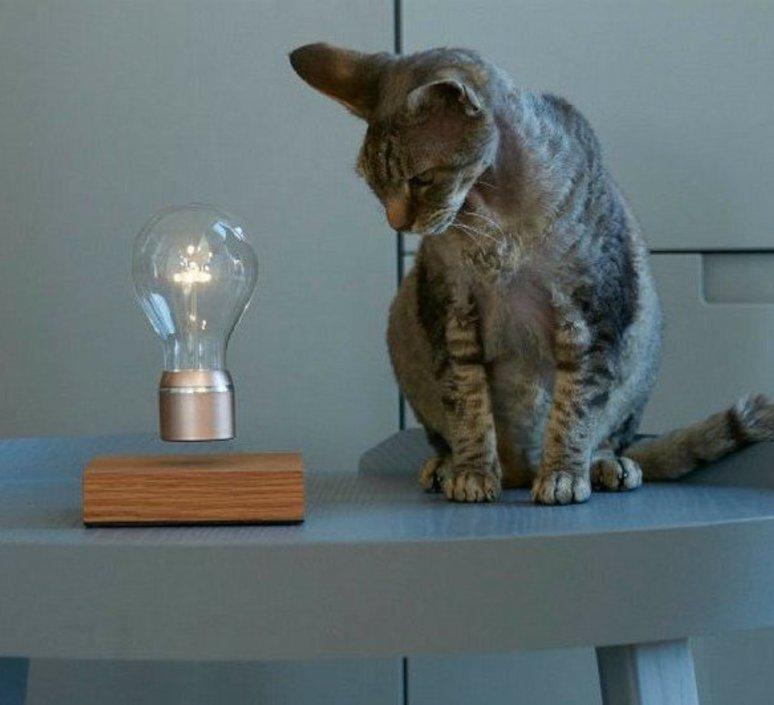 Flyte buckminster 2 0 simon moris lampe a poser table lamp flyte flyte buckminster 2 0  design signed 38825 product