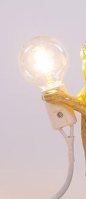 Ampoule led led filament blanc lcm hcm seletti normal