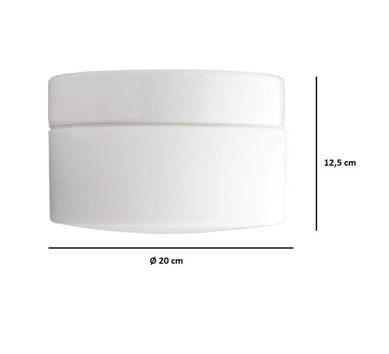 Applique plafonnier salle de bain ip44 blanc porcelaine et verre opalin o20cm h12 5cm zangra 77958 product