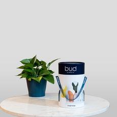 Bud melissa yip baladeuse portable lamp  innermost lb13210544  design signed nedgis 76022 thumb