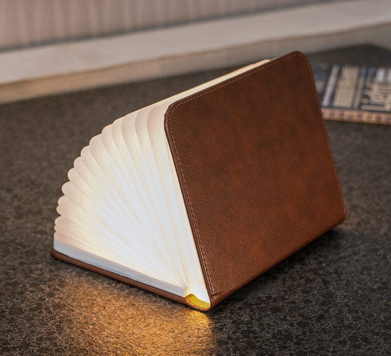Smart book large studio gingko baladeuse portable lamp  gingko gk12l2   design signed nedgis 96748 product