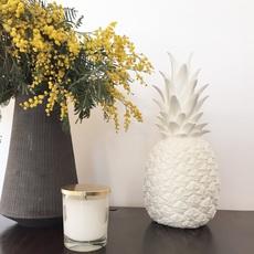Ananas pina colada eva newton goodnight light pina colada blanc luminaire lighting design signed 60565 thumb